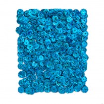 Flitre - Sequins TURQUOISE 10 g