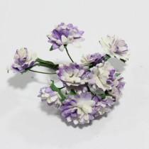 Papierové kvety - aster daisy lilac 10ks
