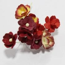 Papierové kvety - sweethearts 10ks mixed red