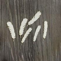 Lepenkový výrez -  pierka