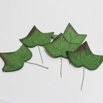 Papierové  listy - ivy 3,5 cm, 5ks