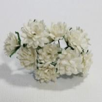 Papierové kvety - aster daisy 10ks