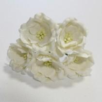 Papierové kvety - magnolia biele 5ks
