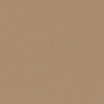 Texture cardstock - peanut