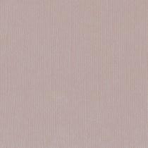 Texture cardstock - rhino