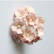 Papierové kvety - sweethearts 10ks svetlo ružové