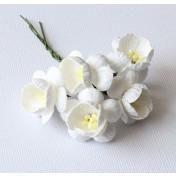 Papierové kvety - cherry biele 5ks